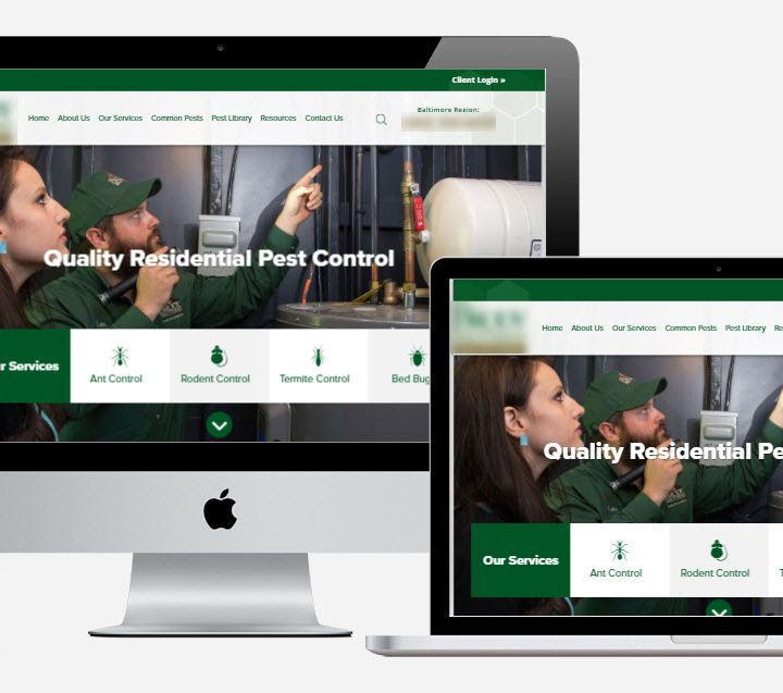 Do you wish to create a website for business success? A step-to-step guide is provided here!!